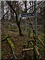 SU2068 : Footpath to Chopping Knife Lane Marlborough by Gillie Rhodes