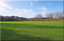 SO8475 : Sports Field, Spennells, Kidderminster by P L Chadwick