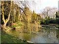 SJ9493 : Pole Bank Pond by Gerald England