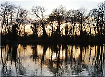 TQ0481 : Little Britain Lake at sunset (2) by Stefan Czapski