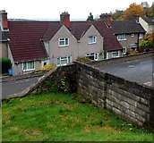 ST5393 : Rockwood Road houses viewed from Piggy's Hill, Chepstow by Jaggery