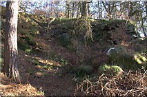 SK2579 : Disused quarry by Roger Temple