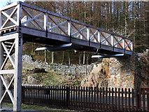 SH6441 : New footbridge at Tan-y-Bwlch Station by Arthur C Harris