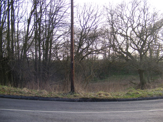 Dried up pond off the B1119 Saxmundham Road