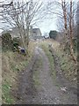 SE1033 : Footpath - Cliffe Lane by Betty Longbottom