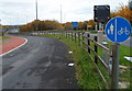 ST5391 : Footpath and cycle route alongside the M48 motorway, Chepstow by Jaggery