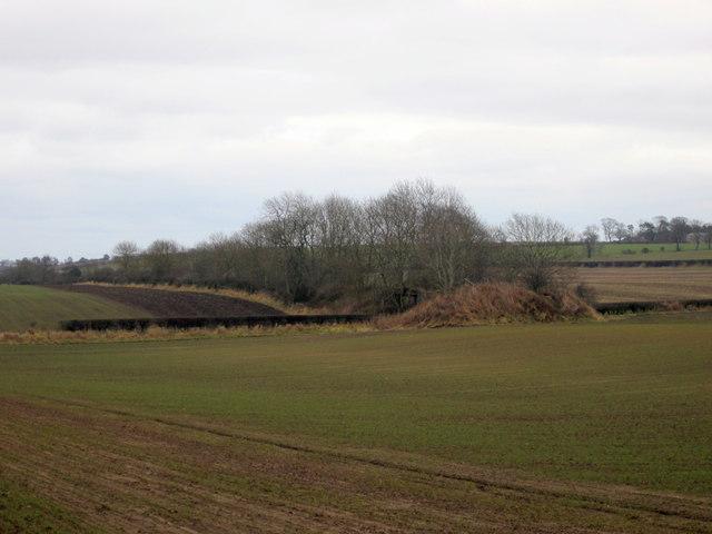 End of former railway embankment near Longridge