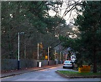 TQ1461 : Access road for Oxshott railway station by nick macneill