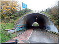 ST5391 : Tunnel under the M48 motorway near Chepstow by Jaggery