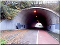 ST5391 : Southern side of a tunnel under the M48 motorway near Chepstow by Jaggery