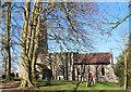 TL9059 : St George, Bradfield St George by John Salmon