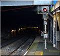 J3373 : Botanic Railway Tunnel, Belfast by Rossographer