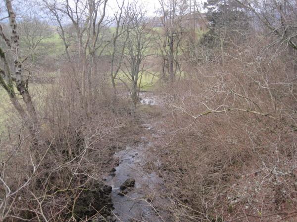 Barhaugh Burn (confluence with River South Tyne)