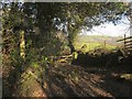 SX7187 : Bridleway junction near Yellam by Derek Harper