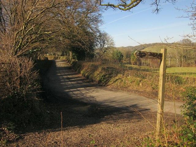 Lane to Chagford