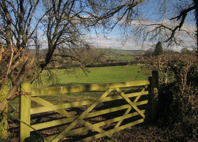 Gate and field, Westcott