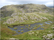 NY2201 : Peathill Crag by David Purchase
