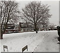 ST3091 : A white green, Pilton Vale, Malpas, Newport by Jaggery