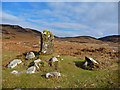 NG6116 : Standing stone in Boreraig by John Allan