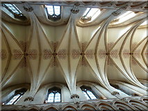 ST5545 : Wells: the nave ceiling in the cathedral by Chris Downer
