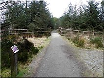 H5776 : Path beside Loughmacrory Lough by Kenneth  Allen