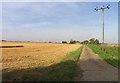 TL3789 : Dykemoor Drove North towards Dykemoor Farm by Andrew Tatlow