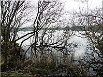 H5776 : Loughmacrory Lough, Loughmacrory by Kenneth  Allen