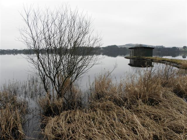 Loughmacrory Lough