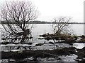 H5775 : Icy water, Loughmacrory by Kenneth  Allen