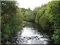 NY3603 : The River Brathay by David Purchase