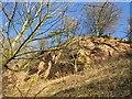 NT9047 : Crag above the Tweed by Richard Webb