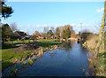 SU5372 : River Pang at Parsonage Farm by Des Blenkinsopp