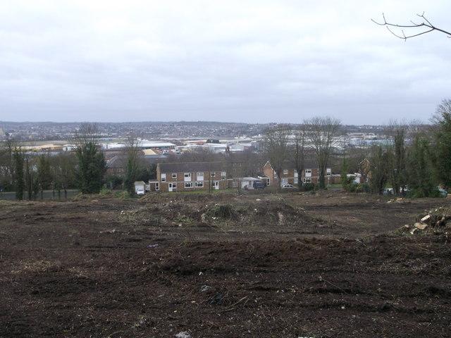 Development Land, Amherst Hill (4)