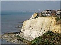 TQ4100 : Cliffs at Peacehaven by nick macneill