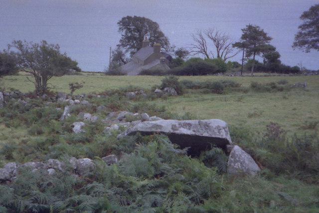 Remains of Long Cairn, Tan y Muriau