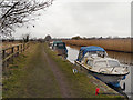 SD3710 : The Leeds and Liverpool Canal near Halsall by David Dixon