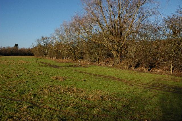 Railway embankment at Tewkesbury