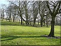 SE1924 : Trees in Royds Park, Liversedge by Humphrey Bolton