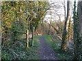 SP9312 : Grand Union Canal Walk approaches Marshcroft Lane by Rob Farrow