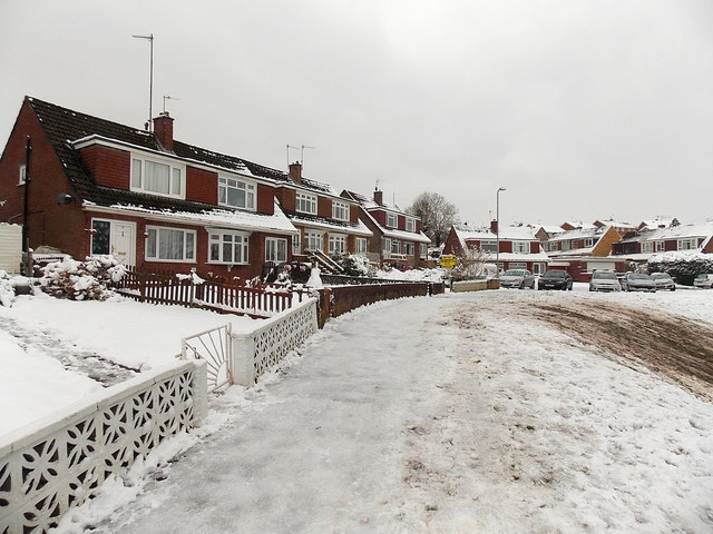 Snowy Alder Grove, Malpas, Newport