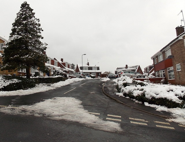 A wintry view of The Spinney, Malpas, Newport
