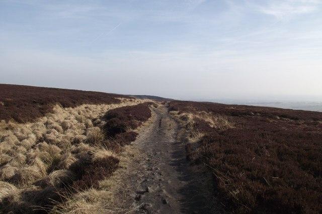 Path across Smithills Moor