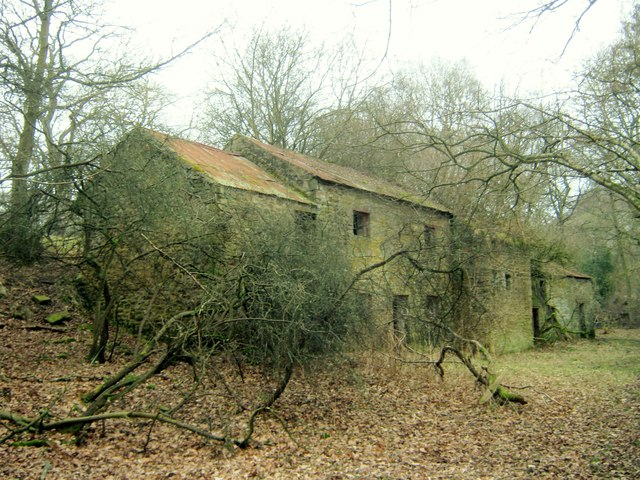 The derelict Harthope Mill now almost overgrown