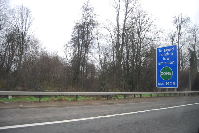 Woodland by the M4