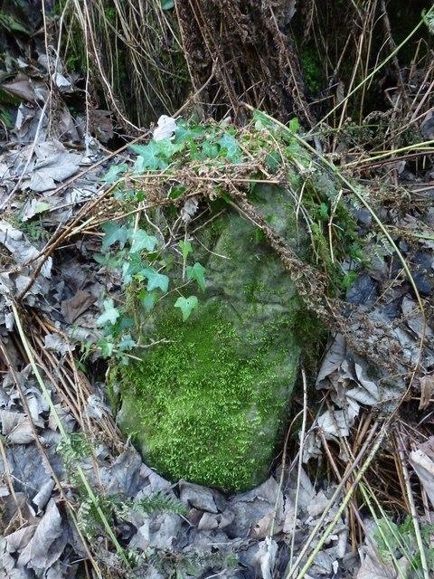Dumbarton Rock: War Department boundary stone no. 5