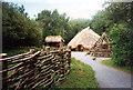 T0122 : Irish National heritage Park Ferrycarrig by Jo Turner