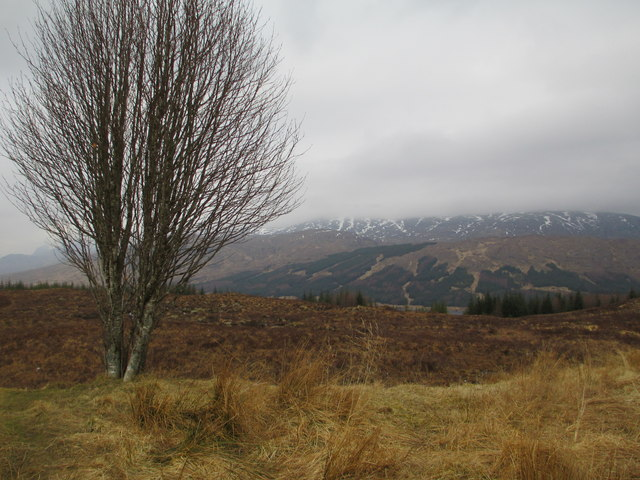 Moorland near Loch Loyne