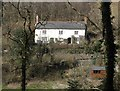 SS8027 : Cottage in Lyddon's Wood by Roger Cornfoot