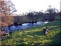 NY4740 : River Petteril near Calthwaite Bridge by Brian Norman