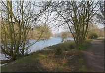 TQ1673 : View from the Thames towpath upstream from Ham House by Stefan Czapski